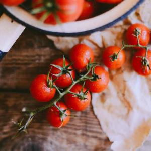 Tokenfarm creates Italian blockchain tomato tracing pilot on VeChain