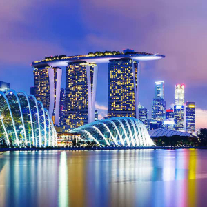 Singapore Sandbox Express project appoints Propine as custodian - blockcrypto.io