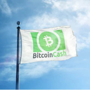 Bitcoin Jesus sees Bitcoin Cash as the next cash for the world