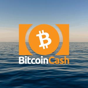 Bitcoin Cash Price: fall to $208