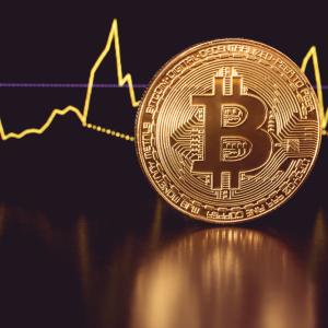 Bitcoin's surge raises crypto market cap to all time high of 336 billion