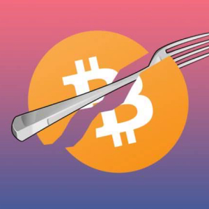 Popular Bitcoin Forks – A Complete Guide for 2019