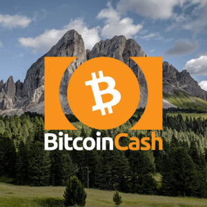 Bitcoin Cash price set to approach $515