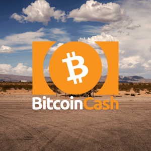 Bitcoin Cash price falls to $317