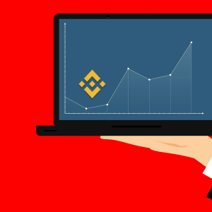 Binance Coin price falls to $13.65