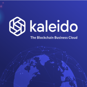 Kaleido and QEDIT combat anti-privacy together