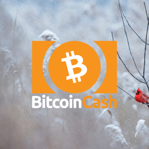 Bitcoin Cash price retests near $380