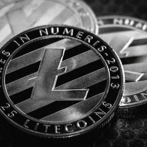 Litecoin price rose above $43: what's next?