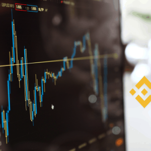 Binance Coin price rises across $12.60: what's next?