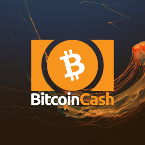 Bitcoin Cash Price: falls below $340