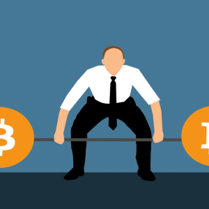 Venture investments in blockchain take a suicidal plunge in 2019: CB Insights reports