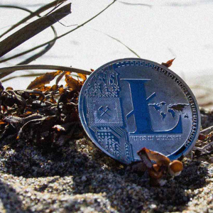Litecoin price prediction: LTC may fall to $46, analyst