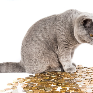 SEC's CAT to monitor trades on exchanges