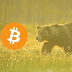 $449 Million Worth of Bitcoin Liquidated During Yesterday's $1,000 Drop