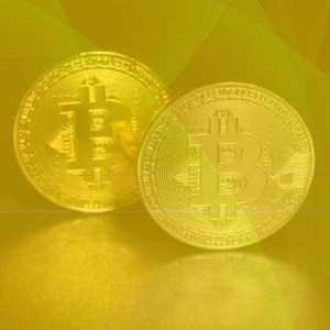 Bitcoin Price Will Dump At Halving And Moon Afterwards, Majority Believes