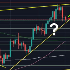 Bitcoin Price Analysis: Despite The Correction, BTC's Showing Strength But Still In Danger. $9000 Or $10K Next?