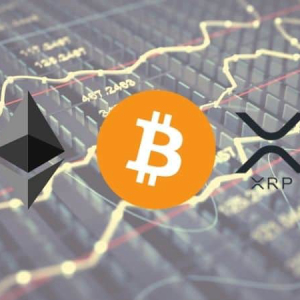 Crypto Price Analysis & Overview August 7th: Bitcoin, Ethereum, Ripple, Tezos, and Elrond