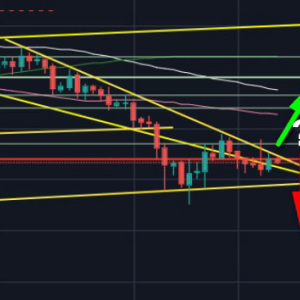 Bitcoin Price Analysis: BTC to $6000 Or $8000? Bulls Vs. Bears War Continues
