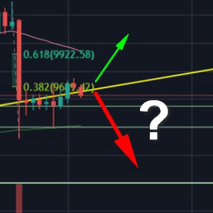 Bitcoin Price Analysis: Following The Huge Dump, Can Bitcoin Recover Before Plunging To $9000?