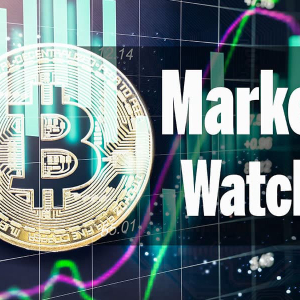Tether (USDT) Is Now The 4th Top Crypto As Market Cap Fallws Below $200 Billion: Monday Market Watch