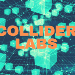 Crypto and Blockchain Venture Builder Collider Labs Closed A $1 Million Investment Round