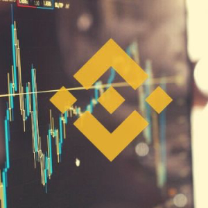 Binance Coin Price Analysis: BNB Follows Bitcoin's Downturn Despite 7-Days Recovery, Charts 3% Daily Loss