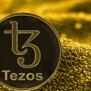 The Next Crypto Trend for Exchanges? Coinbase Is Now The Largest Tezos Validator