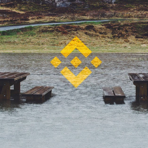 Binance Removing CLOAK, MOD, SALT, SUB, and WINGS: Industry-Wide Delisting Trend