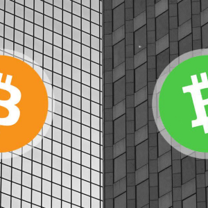 Growing hashpower means Bitcoin and Bitcoin Cash could halve at the same time