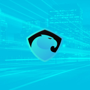 Crypto exchanges are rushing to list Aragon (ANT), but what is it?