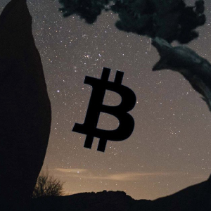 """Former Goldman Sachs exec: Bitcoin price rallying to $500,000 """"achievable"""" due to macroeconomic trends"""