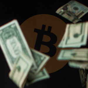 HODLers are in profit as Bitcoin keeps a YTD return of 100%