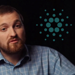 Cardano packs its schedule with new releases every week