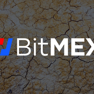 BitMEX faces heat after giving up 30,000 customers emails by accident