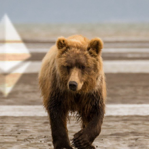 Ethereum is on the cusp of a bear cross, placing it in dangerous territory