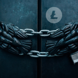 Halving reduced Litecoin's mining hash rate by almost 30%