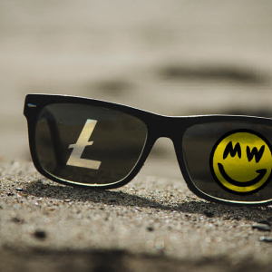 Grin developer: Litecoin closer to gaining privacy features with MimbleWimble