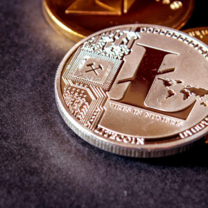 Litecoin (LTC) Addresses Hit with Dusting Attack