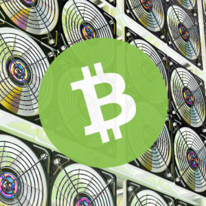 Bitcoin Cash Halving Executes, Slashing Crypto Rewards Ahead of BTC and BSV