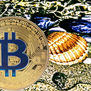 Warren Buffett Doubles Down on Why He Thinks Bitcoin (BTC) Is No Different Than Seashells