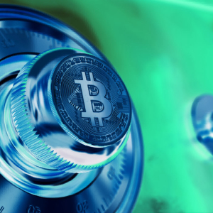 MicroStrategy CEO Compares US Dollar to Melting Ice After Increasing Bitcoin Portfolio to $425,000,000 in BTC