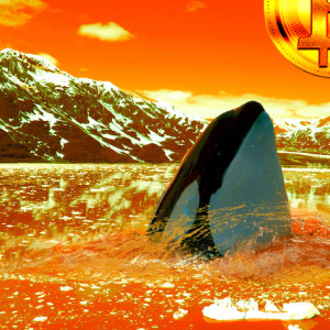 Bitcoin Whale Drains Crypto Wallet in Huge 12,474 BTC Transfer – Plus Ripple, XRP, Ethereum, Tron, IOST