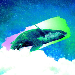 Second-Largest Bitcoin Whale in Existence Moves Staggering $1,146,000,000 in BTC