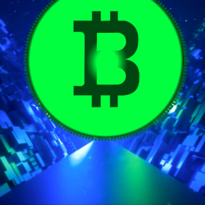 From Hodling to Halving, Bitcoin (BTC) Revs Up for Its Next Move: eToro Market Analysis