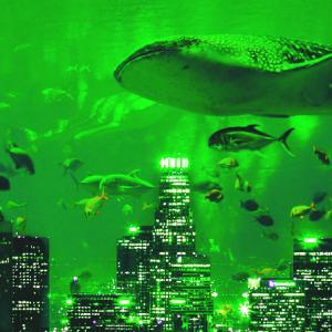 Crypto Whale Moves 40,000 Bitcoin (BTC) Worth $229 Million – Plus Ripple and XRP, Ethereum, Litecoin, Stellar, Tron, Cardano