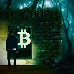 Bitcoin to the Rescue When Fiat Economies Fall Apart