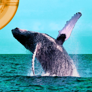 Did This $50,000,000,000 Whale Trigger Massive Bitcoin and Crypto Market Reversal?