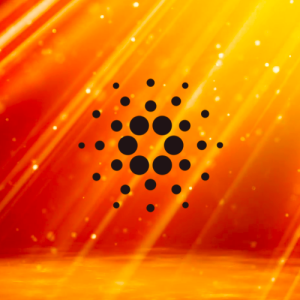 Cardano Exploring Privacy Features That Power Zcash, Says Charles Hoskinson