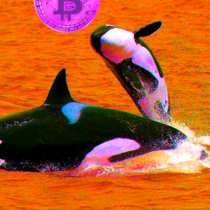 Two Bitcoin Whales Just Moved 31,099 BTC Worth $492 Million
