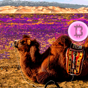 Cardano's Charles Hoskinson: A Camel Herding Nomad in Mongolia Owns Bitcoin (BTC)